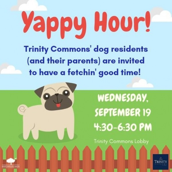 We are pawsitively excited to play with our pawesome dog residents tomorrow during our #yappyhour event in the lobby from 4:30-6:30pm. We hope to see you and your humans there! #trinitycommons #thisisnwrliving #weloveourresidents #dogsarepeopletoo